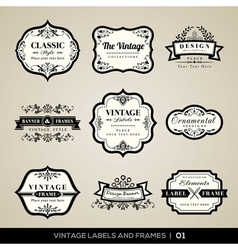Vintage labels and frames design elements vector image vector image