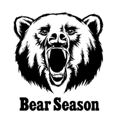 Hand drawn roaring bear T-shirt design vector image vector image