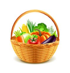 vegetables in wicker basket isolated vector image