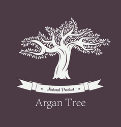 Argania plant or argan tree with foliage vector