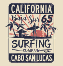 Baja california sur surfing company vector