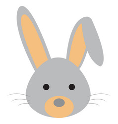 cute little rabbit on white background vector image