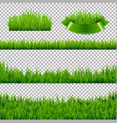 Green grass borders isolated vector