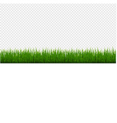 green grass frame set and isolated transparent vector image