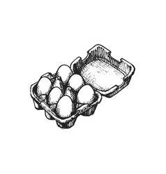 hand drawn eggs box in graphic vector image