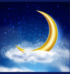 magic night sky with cloud vector image