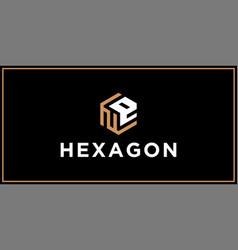 Ne hexagon logo design inspiration vector