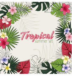 Set of of tropical flowers and vector