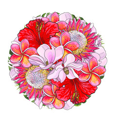 Tropical flowers in bouquet of sphere shape vector