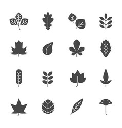 autumn leaves icons silhouettes various autumn vector image
