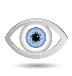 blue female eye vector image