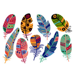 Collection colorful bird feathers with patterns vector