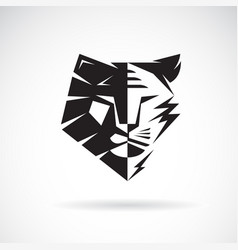 half face lion and half face tiger on white vector image