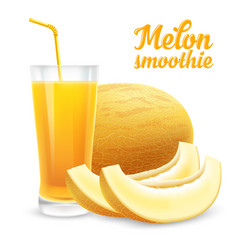 melon smoothie vector image