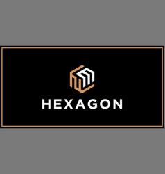 nm hexagon logo design inspiration vector image