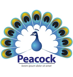Peacock logo or icon vector