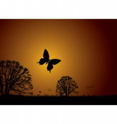 Sunset nature butterfly vector