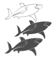 set of with a great white shark vector image