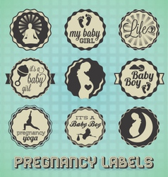 Vintage Pregnancy Labels and Icons vector image