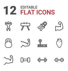 12 muscle icons vector