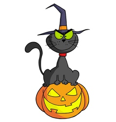 Cartoon Character Halloween Cat On Pumpkin vector image