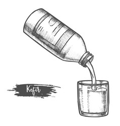 dairy products kefir sketch milk food and drinks vector image