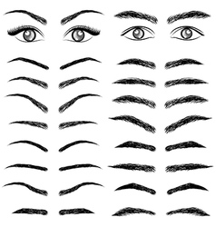 Eyes eyebrow women and man vector