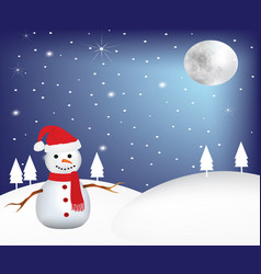 snowman at night at winter scene vector image