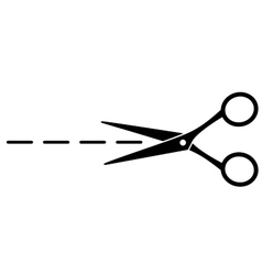 cut line with scissors vector image