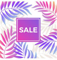 summer sale bright poster with palm leaves on vector image