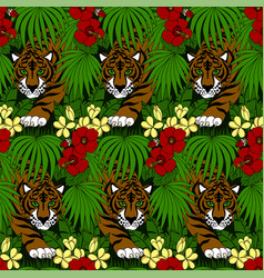 tiger walking in forest vector image