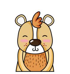 Adorable and smile bear wild animal vector