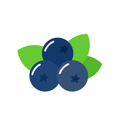 blueberry with green leaves isolated on white vector image