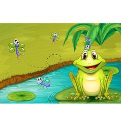 Frog and flies vector
