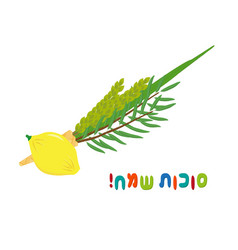 jewish holiday of sukkot four species vector image
