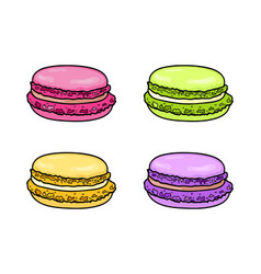 Macaroon set french colorful macaron sweet vector