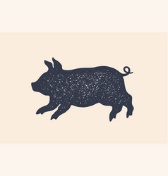 pig piggy concept design farm animals vector image