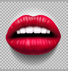 red sensual lips vector image