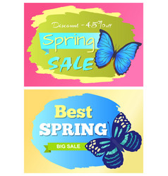 sale spring discount labels set butterfies dots vector image