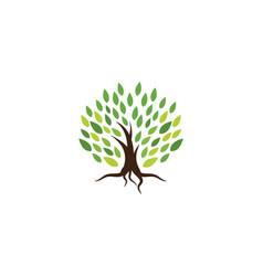 Tree symbol icon logo design vector
