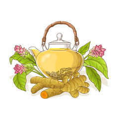 turmeric tea in teapot vector image