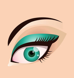 woman eye makeup beauty vector image