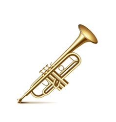 Trumpet isolated on white vector image vector image
