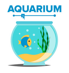 Aquarium cartoon fish home glass tank vector