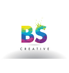 Bs b s colorful letter origami triangles design vector