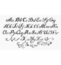 Calligraphy alphabet typeset lettering vector image