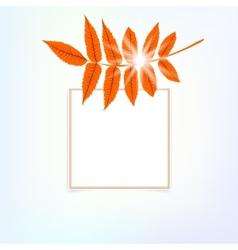 card with autumn decor vector image