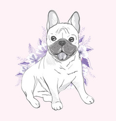 french bulldog sitting in front of white vector image