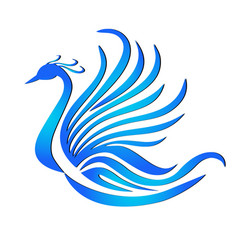 phoenix bird feather logo vector image