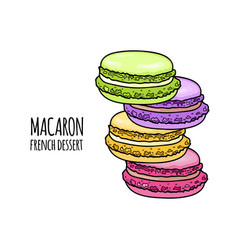 Stack of colorful macaron almond cakes isolated vector
